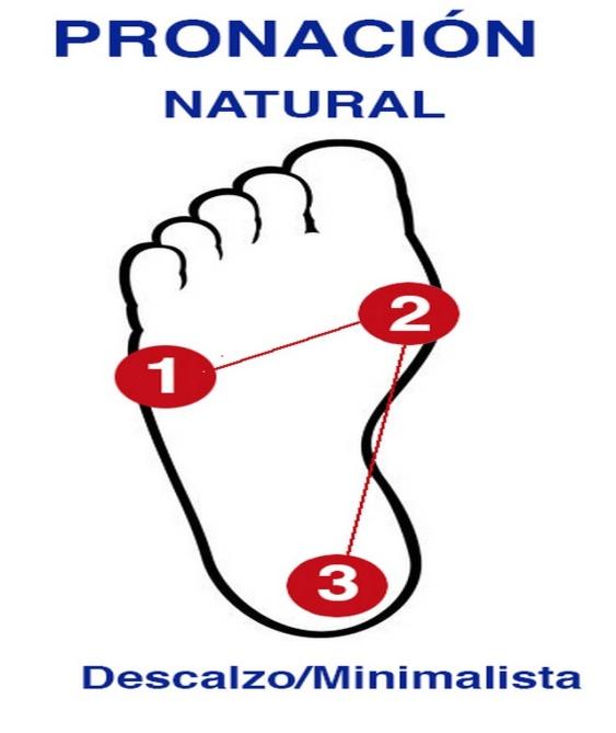 El pie humano: como esta diseñado (Oscar Gonzalez Masana)